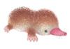 moles3